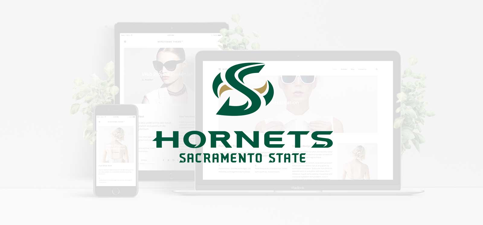 Sacramento State University Web Design Scholarship